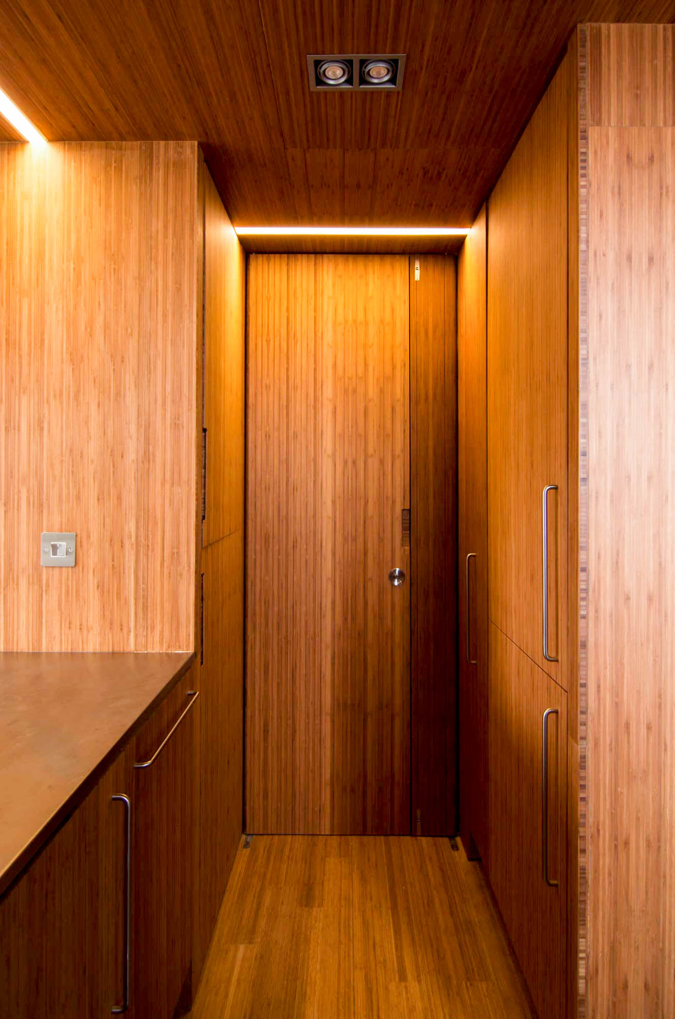 Interior view of the Plyboo pod kitchen and concealed door.